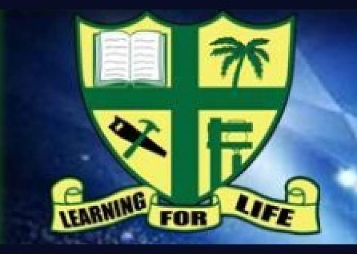 Alston High School  logo