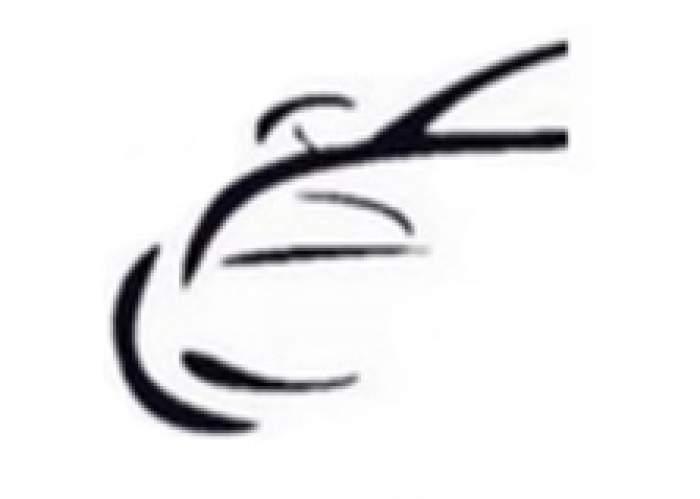 Cole's Car Rental  logo