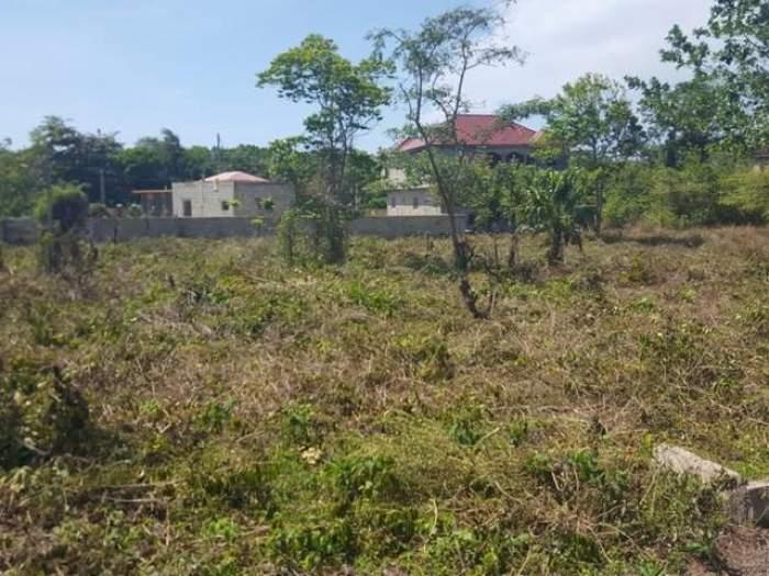 land5