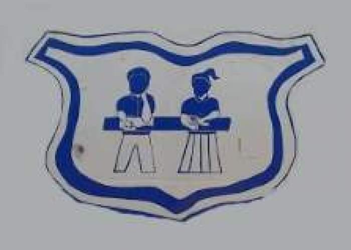Snowdon Primary logo