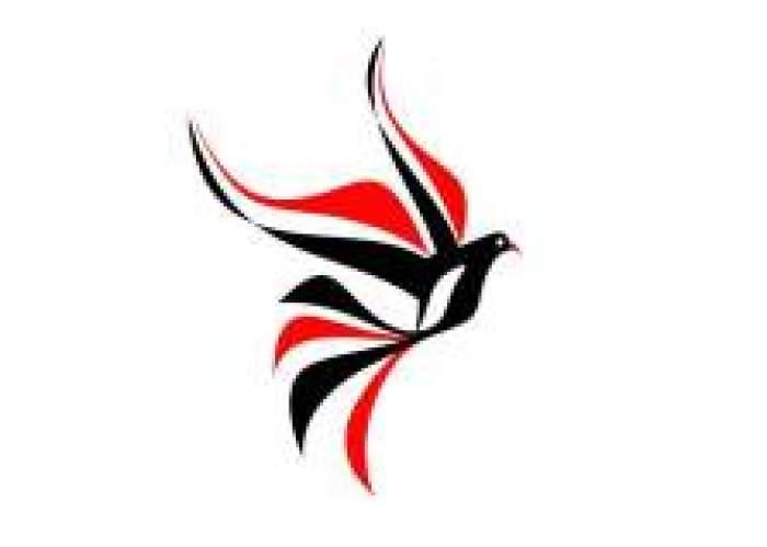 Models & Talent Jamaica logo