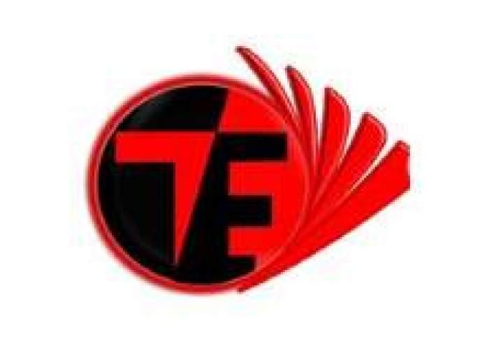 TamoTexture Eelectronics logo