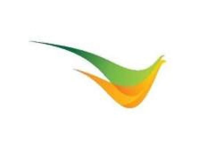 HummingBird Tours and Car Rental Services logo