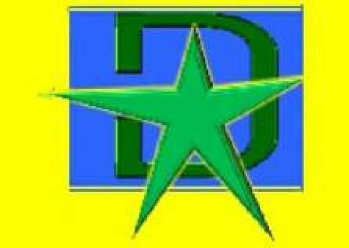 D'Star Courier Service logo