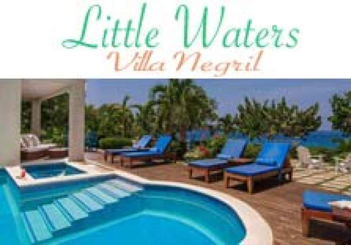 Little Waters Villa logo