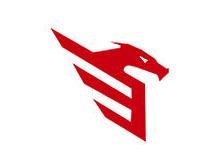 Dier Executive Security Servs Ltd logo