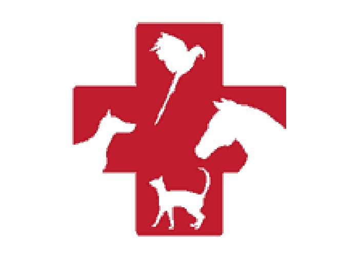 Dr Clifford A Bradford logo