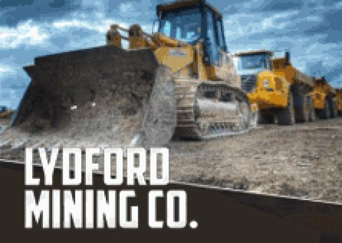 Lydford Mining Co. Ltd LOGO