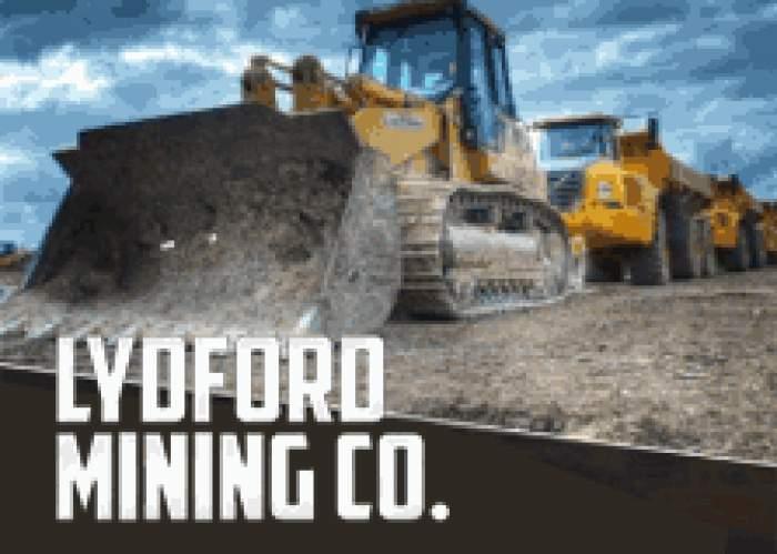 Lydford Mining Co. Ltd LOGO