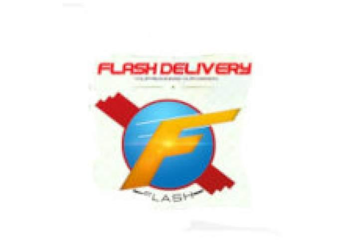 876 Flash logo