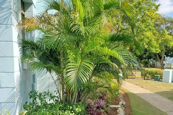 48445 191 Point Village Resort (18)