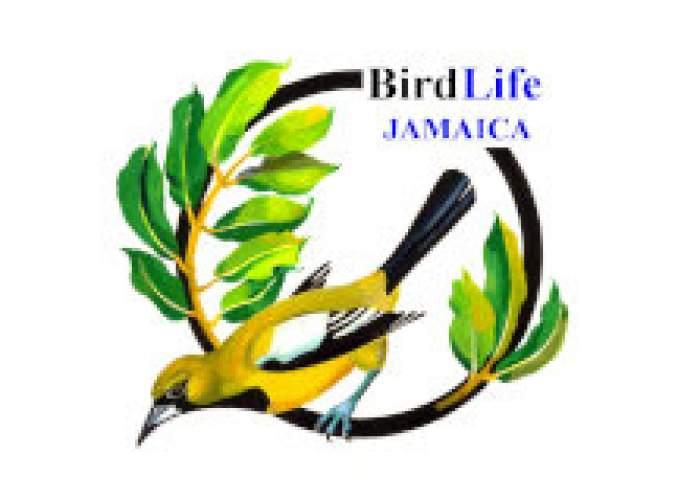 BirdLife Jamaica logo