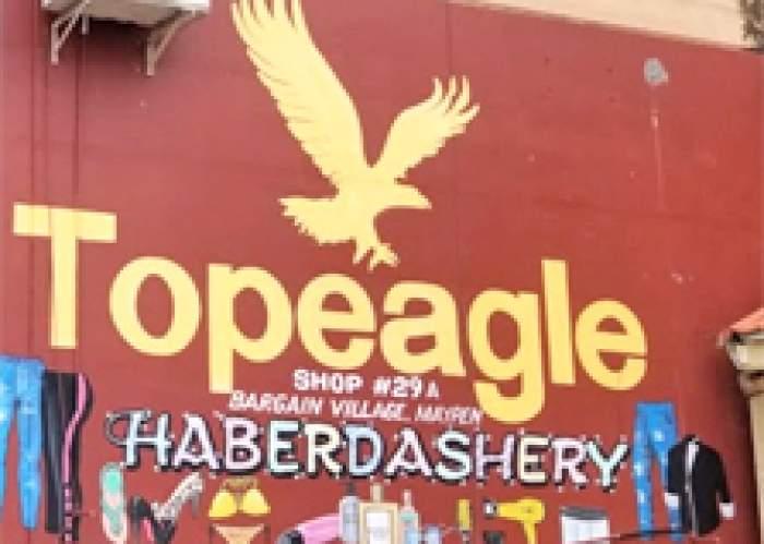 Top Eagle logo