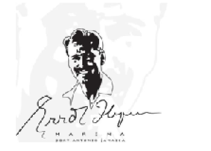Errol Flynn Marina logo
