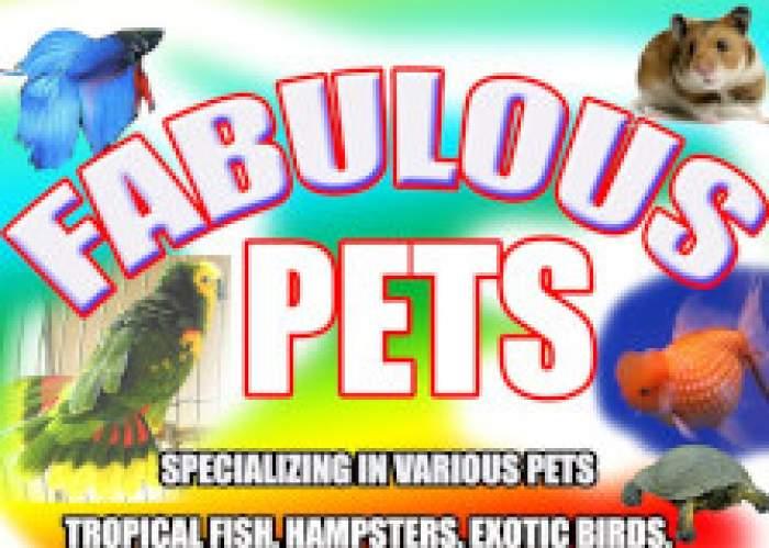 Fabulous Pets logo