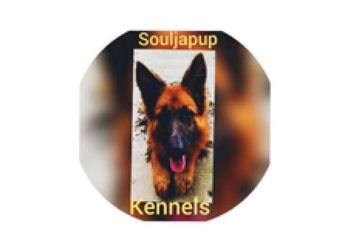 Souljapup Kennels logo