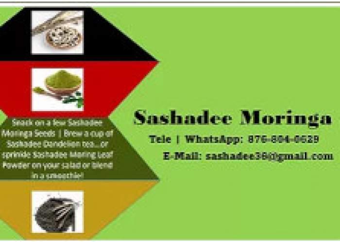 Sashadee Moringa logo