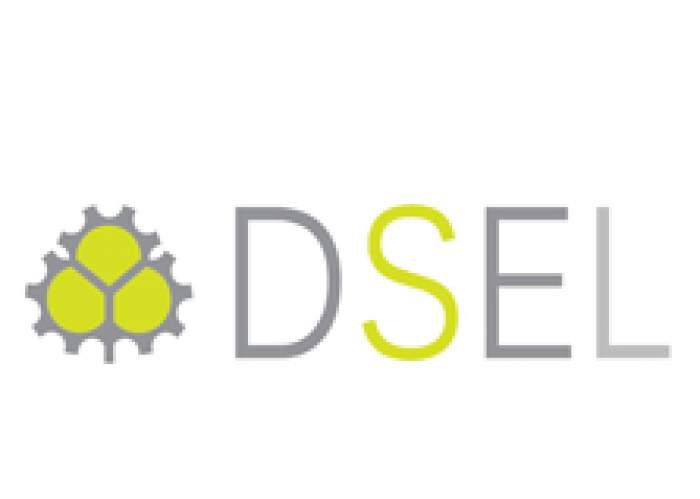 Diversified Services & Equipment Ltd (DSEL) logo