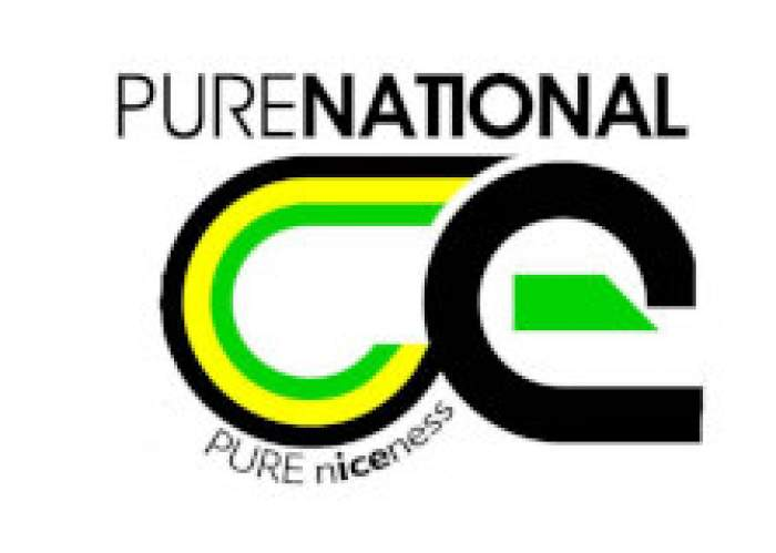Pure National Ice logo