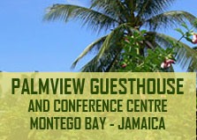 Palm View Guest House & Conference Center logo