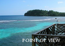 Point of View Villa logo