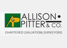 Allison Pitter & Co logo
